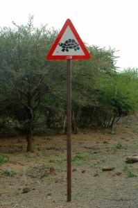 Pazi kornjača